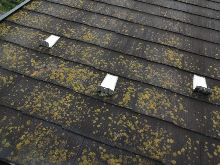 屋根コロニアル洗浄前